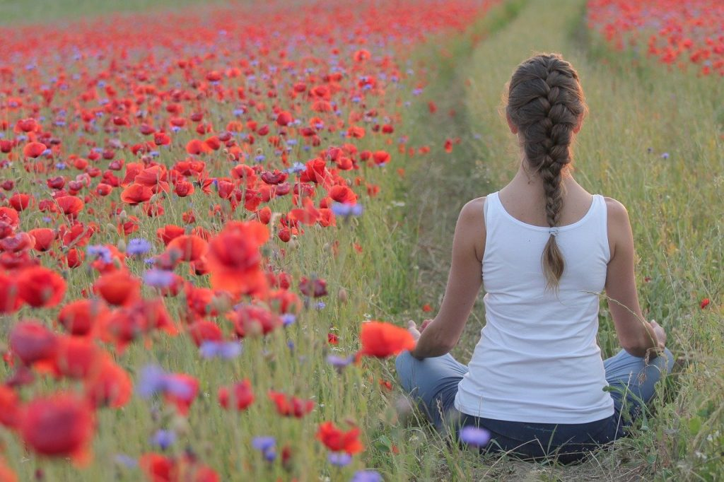poppies, yoga, field-3644060.jpg